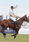 Prince Harry Visiting USA for A Polo Cup