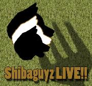 Shibaguyz LIVE!!