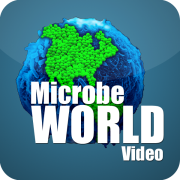 MicrobeWorld Video - Apple TV | HD
