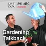 Adelaide's Talkback gardening