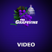 Political Grapevine