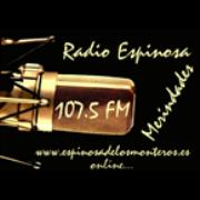 Radio Espinosa Merindades - Bilbao, Spain