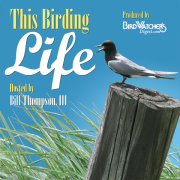 This Birding Life/Bird Watcher's Digest (M4A)