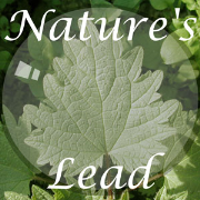 Nature's Lead