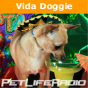 PetLifeRadio.com - Vida Doggie - Start you and your dog's day with a little Latin Flavor.    It's one Spicy show on Pet Life Radio!