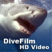 DiveFilm HD Video (HD)