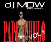 """DJ MDW """" PAPI CHULO VOL 1 """""""