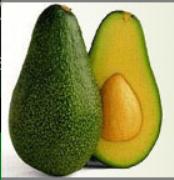 avocadoknits