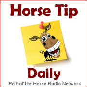 Horse Tip Daily » All Daily Tips