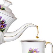 Dishing TEA   Blog Talk Radio Feed