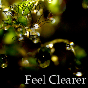 Feel Clearer