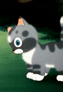 Непослушный котенок