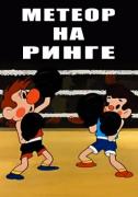Метеор на ринге